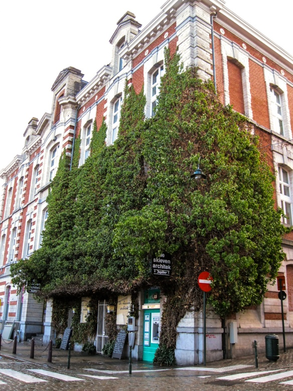house / tree